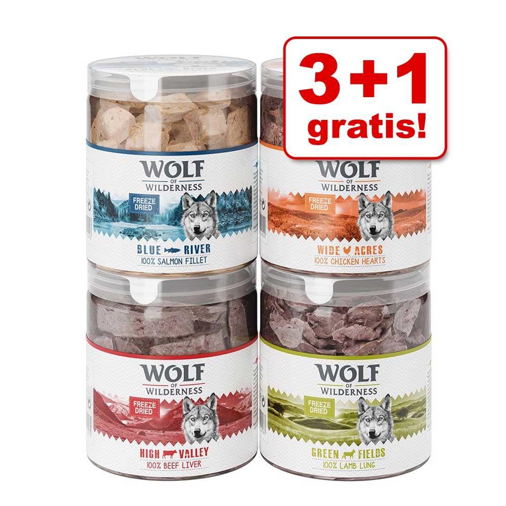 3 + 1 gratis! Wolf of Wilderness - liofilizowane przysmaki premium - Filet z łososia (280 g)