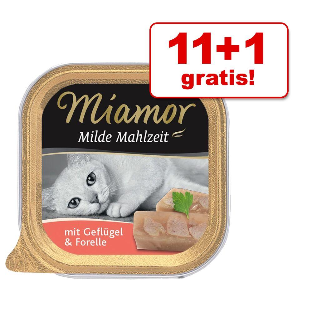 11 + 1 gratis! Miamor Milde Mahlzeit, 12 x 100 g - Kurczak z pstrągiem