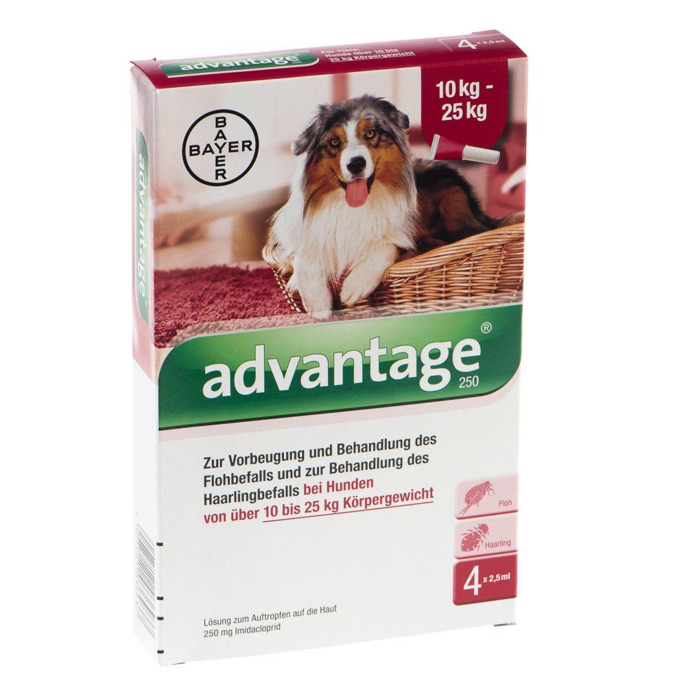 Advantage® 250 für Hunde - 250: 10-25 kg (4 Pip...