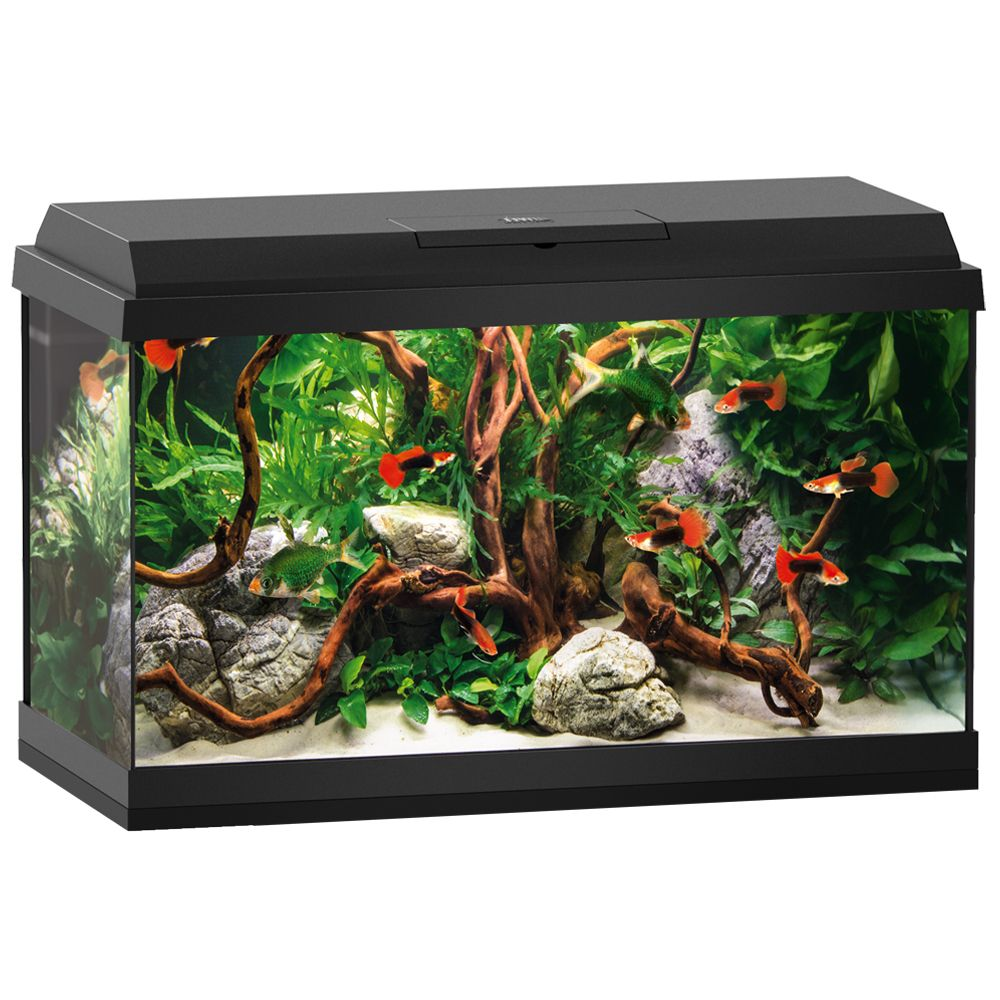 Juwel Primo 60L LED Aquarium Starter Set