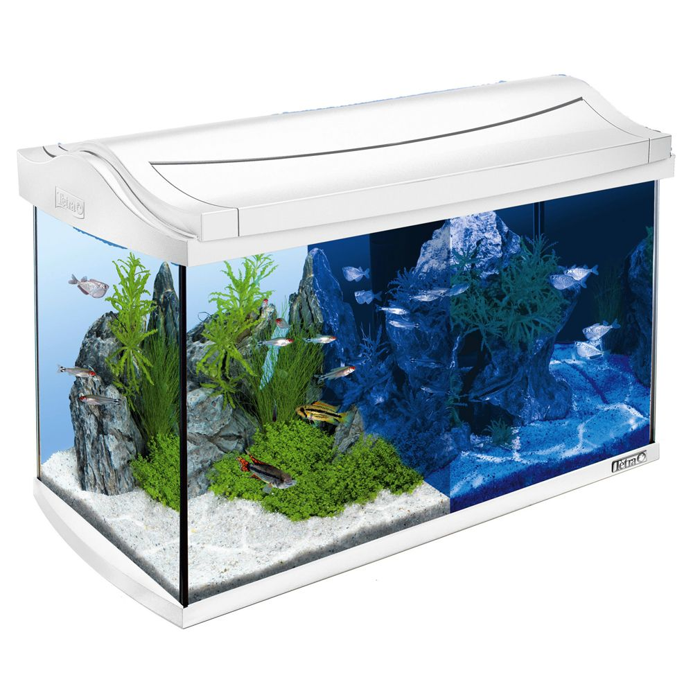 The ideal home for your fish and plants: The Tetra AquaArt LED Discovery Line Aquarium with day and night lighting offers you a window into a fascinating underwate...