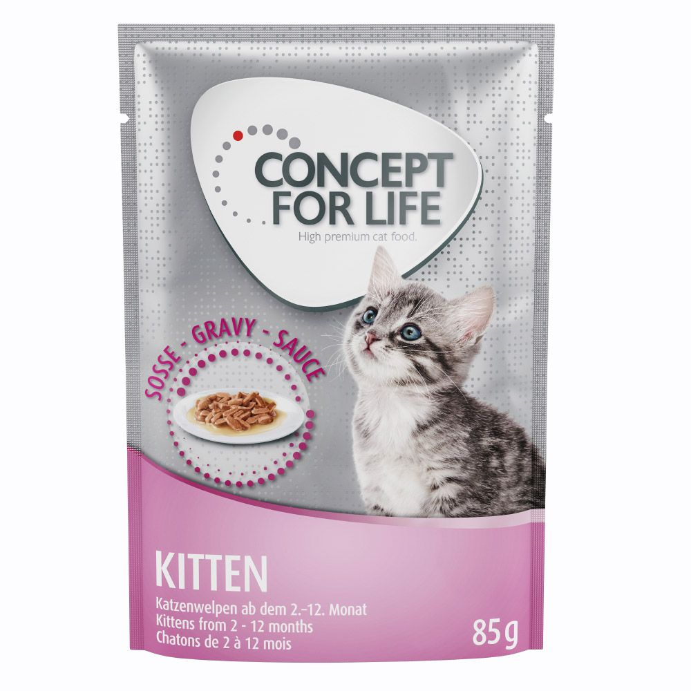 Concept for Life Kitten in Gravy