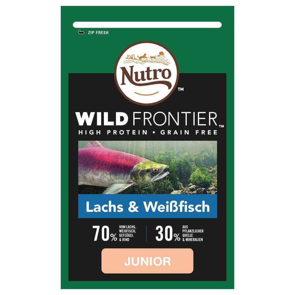 Nutro Wild Frontier Junior Salmon & Whitefish - 1,5 kg