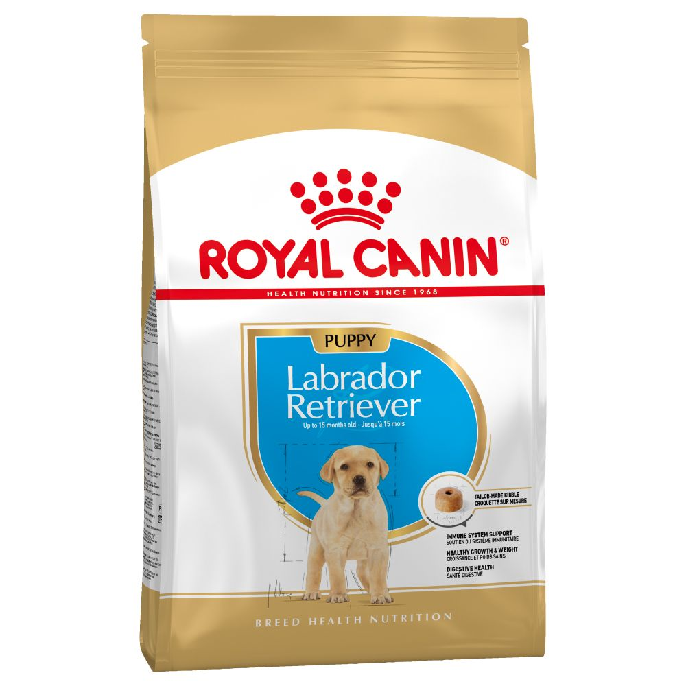 Puppy Labrador Retriever Breed Royal Canin Dry Dog Food