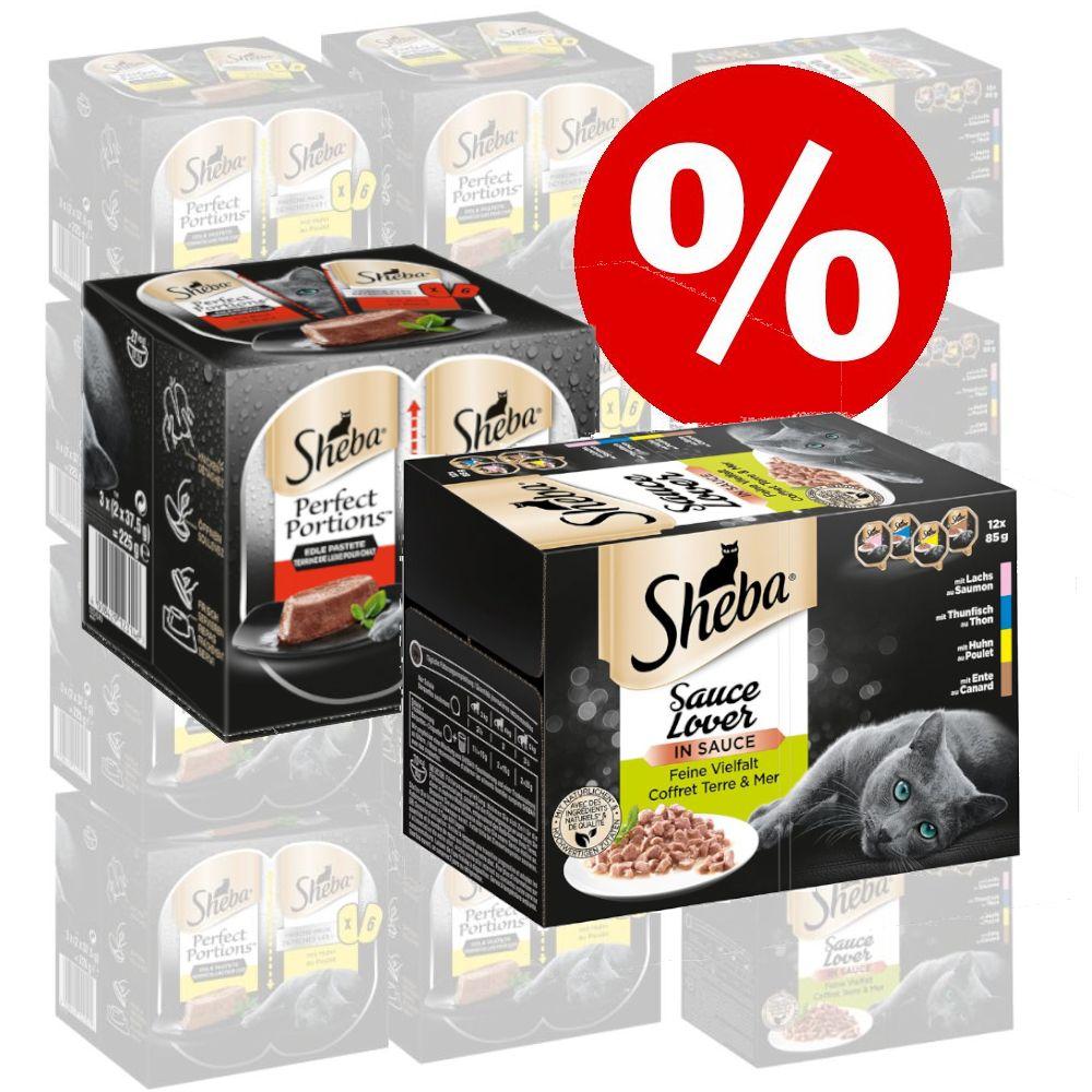 48 x 85 g Sheba + 48 x 37,5 g Perfect Portions med nötkött till sparpris! - Classics in Pastete