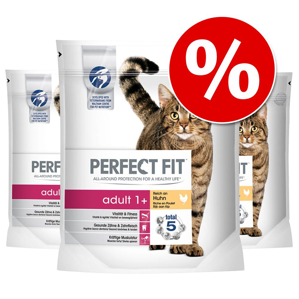 Ekonomipack: Perfect Fit kattfoder till sparpris! - Indoor 1+ Kyckling (4 x 1,4 kg)