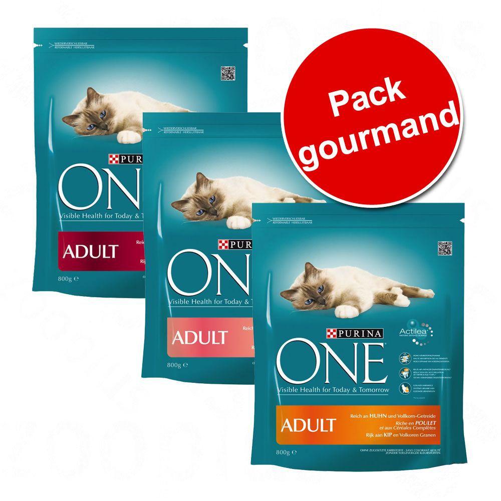 Pack gourmand Purina ONE - Pack gourmand Bien-être