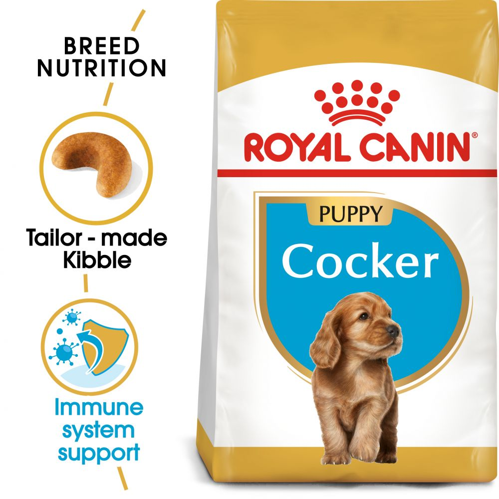 Puppy Cocker Spaniel Breed Royal Canin Dry Dog Food