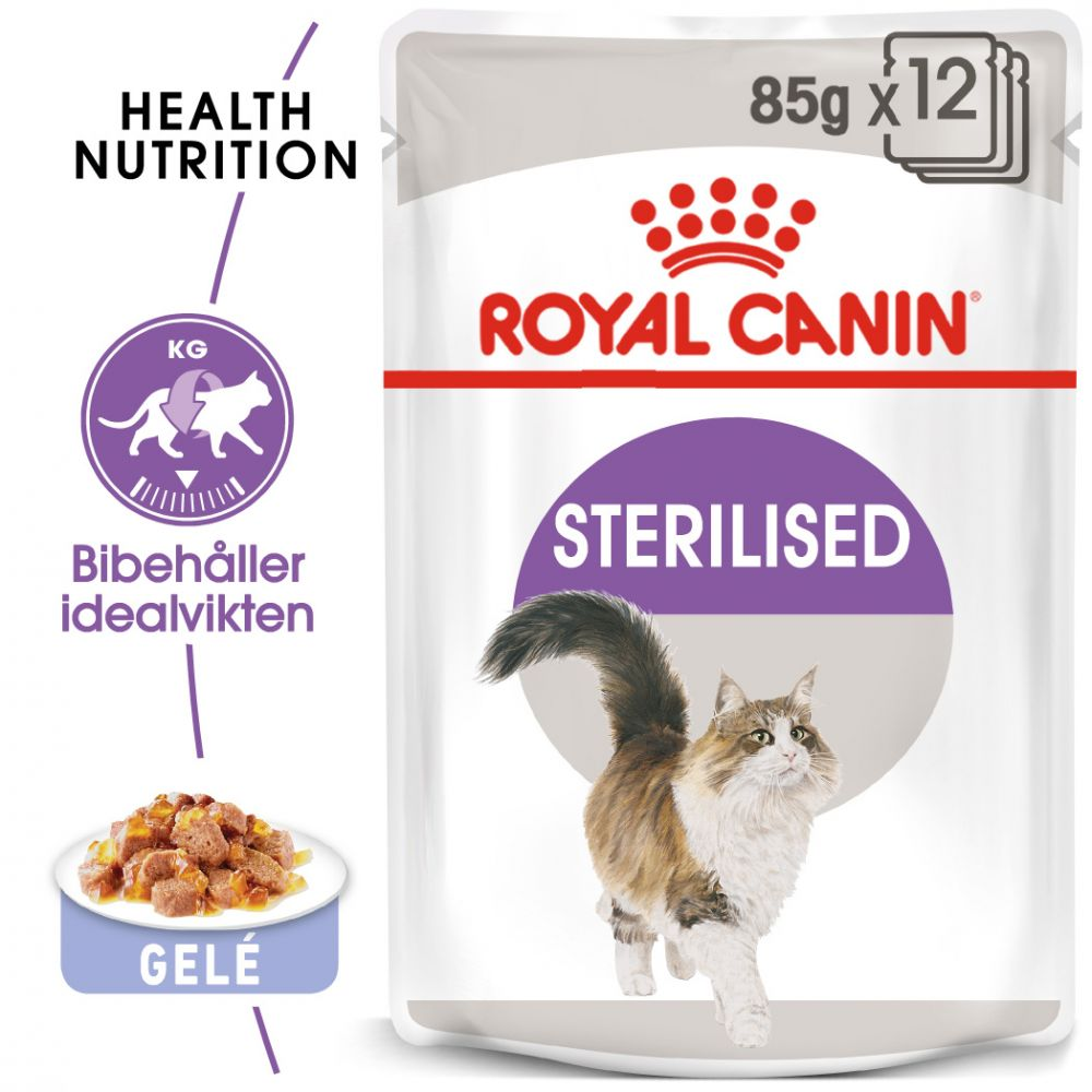 Royal Canin Sterilised i gelé - 48 x 85 g