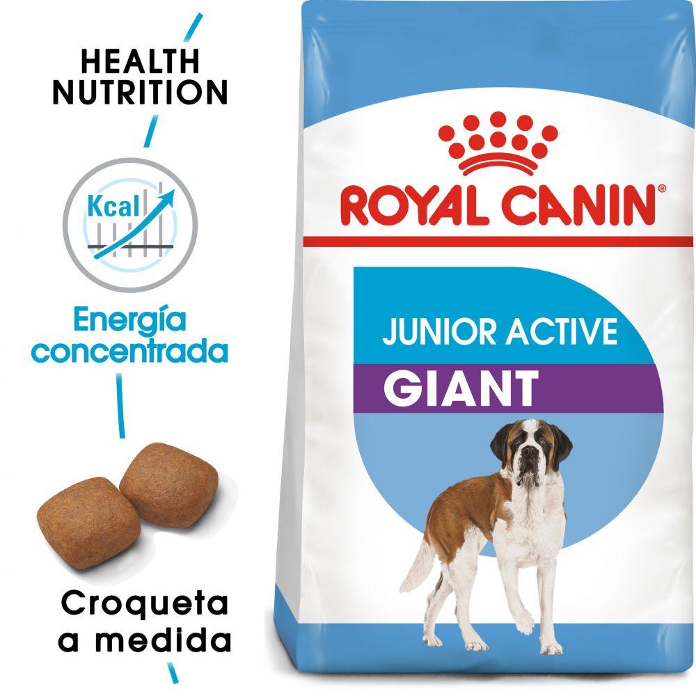Royal Canin Junior Active Giant - 15 kg