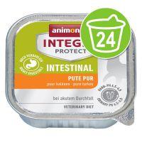 Animonda Integra Protect Adult Intestinal 24 x 100 g Schaaltje Kattenvoer kalkoen