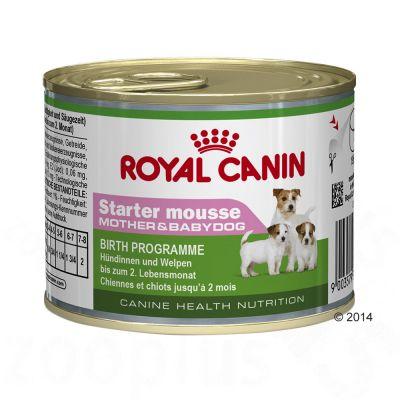 Royal Canin Starter Mousse Mother & Babydog - 48 x 195 g