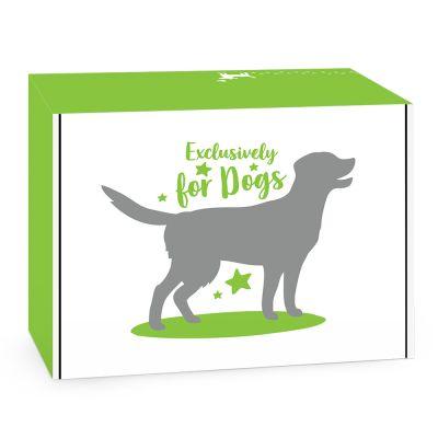 Superbox: Nejexkluzivnější značky pro psy všech dob - 8-dílný