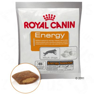 Royal Canin Energy Booster – Ekonomipack: 4 x 50 g