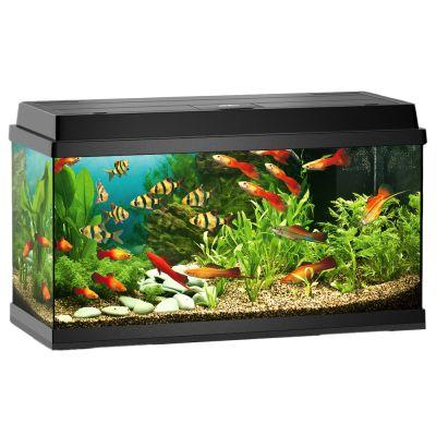 juwel rekord 800 aquarium approx 110 l black. Black Bedroom Furniture Sets. Home Design Ideas