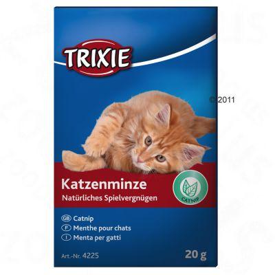 Trixie kattmynta, 20 g – Ekonomipack: 3 x 20 g