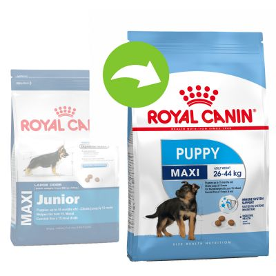 Royal Canin Maxi Puppy / Junior - 15 kg