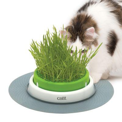 Catit Senses 2.0 -ruohoalusta - 1 ruohoalusta