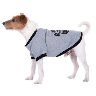 College Paw -koiranpusero selän pituus noin 25 cm (S-koko)