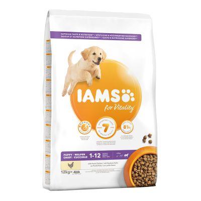 IAMS for Vitality Puppy & Junior Large con pollo fresco - 2 x 12 kg - Pack Ahorro