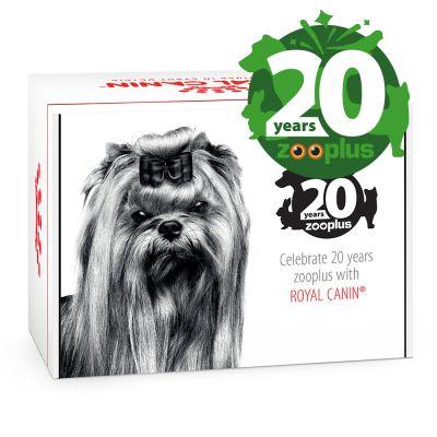 Juhlapainos Royal Canin zooplus-syntymäpäiväpakkaus pienille koirille - 1 kpl