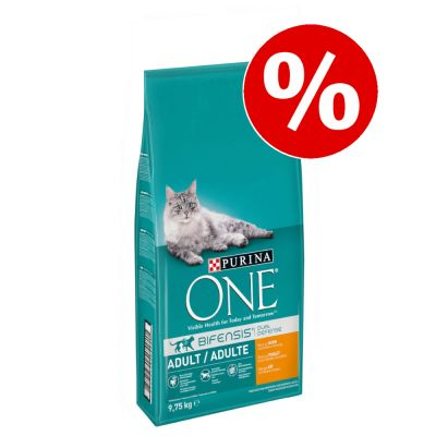 9,75 kg Purina ONE kissanruoka erikoishintaan! - Indoor Formula
