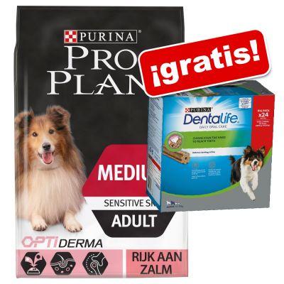 Pro Plan 12 / 14 kg pienso + snacks Purina Dentalife ¡gratis! - 14 kg Large Adult Athletic OptiBalance pollo + Dentalife Large 18 uds.