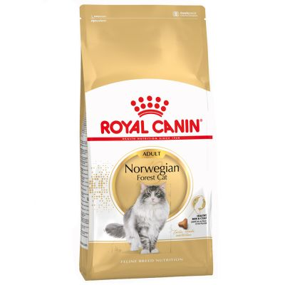 Royal Canin Norwegian Forest Cat Adult - 2 x 2 kg