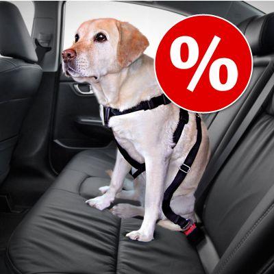 Setti: Trixie-autovaljaat koiralle ja suojapeite autoon - L-koko: rinnanympärys 70-90 cm