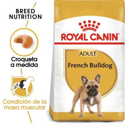 Royal Canin Bulldog Francés Adult - 9 kg