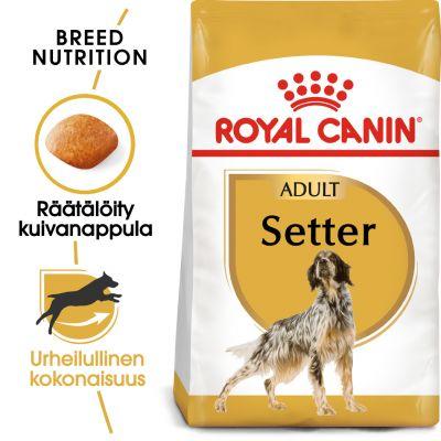Royal Canin Breed Setter Adult - 12 kg