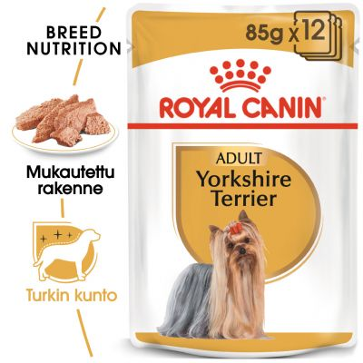Royal Canin Breed Yorkshire Terrier - 12 x 85 g