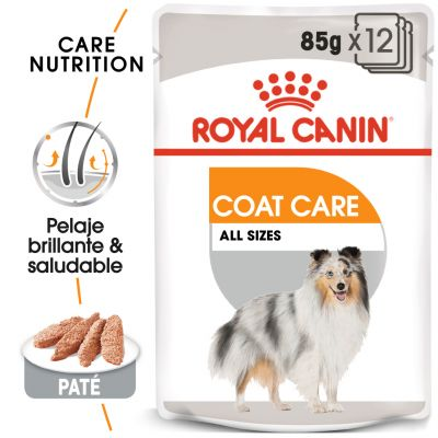Royal Canin Coat Care comida húmeda para perros - 24 x 85 g