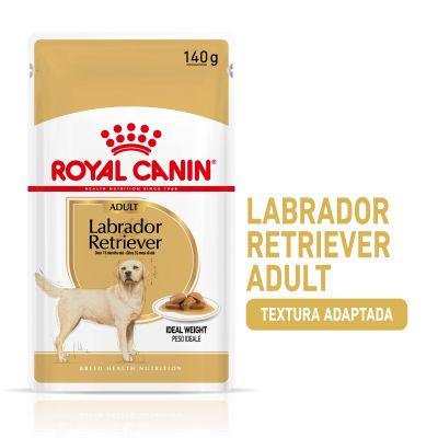 Royal Canin Breed Labrador Retriever Adult en sobres - 40 x 140 g - Megapack