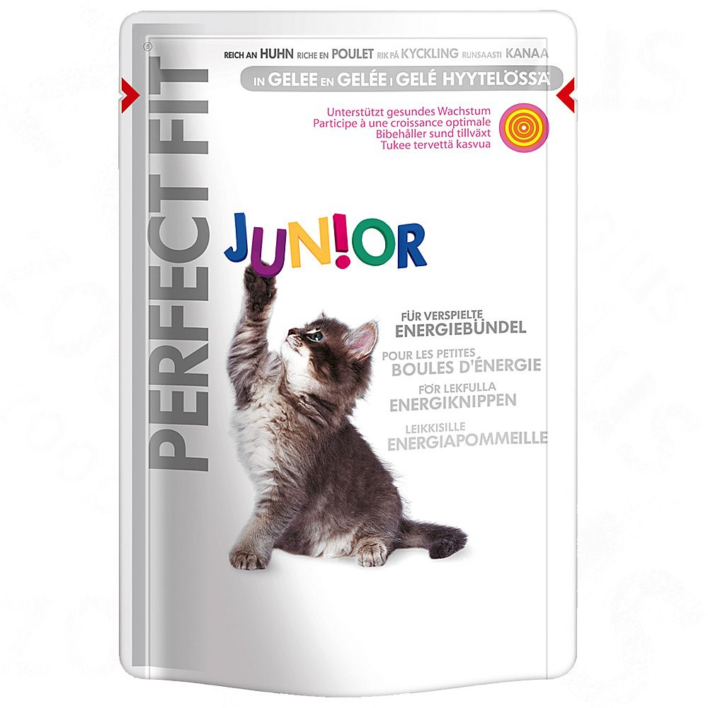 Perfect Fit Junior, z kur