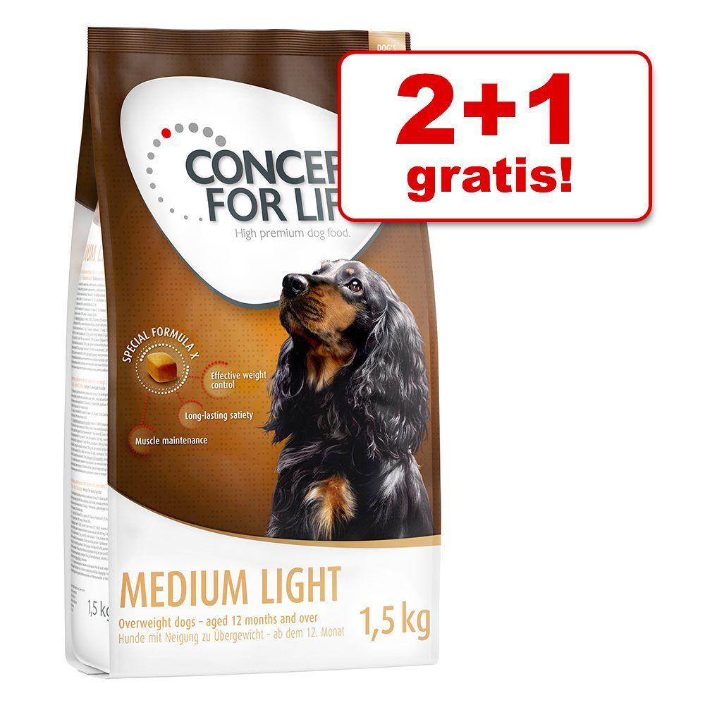 2 + 1 gratis! 3 x 1,5 kg Concept for Life Hundefutter - Adult Boxer