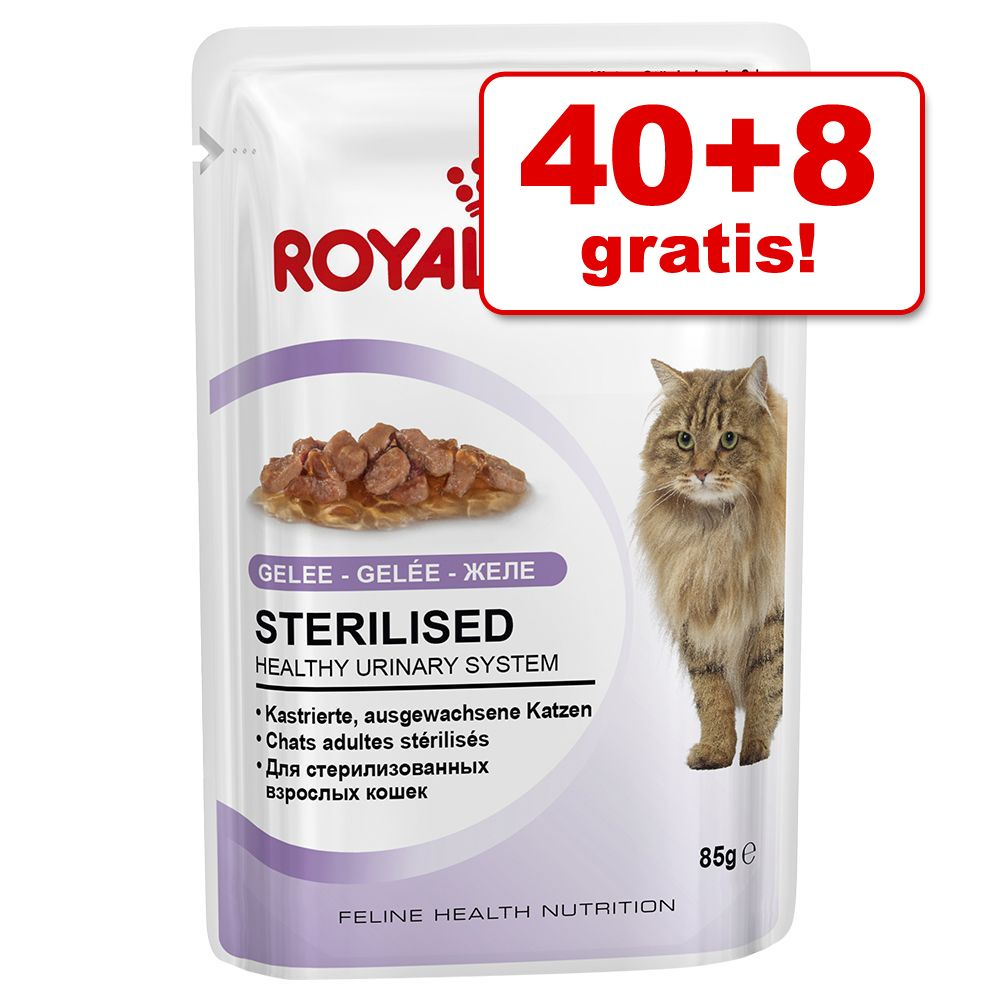 Foto 40 + 8 gratis! 48 x 85 g Royal Canin - Sterilised in Salsa