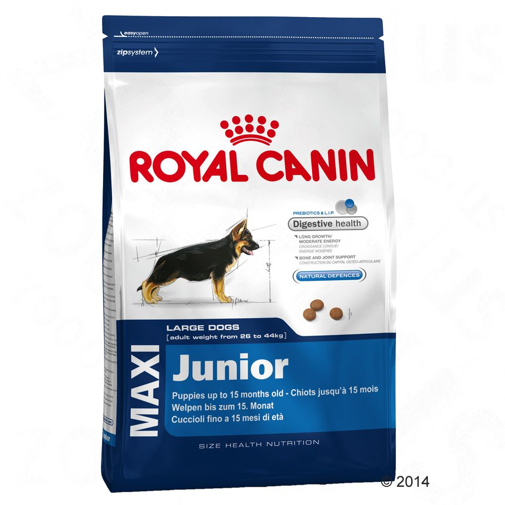 Chien Croquettes Royal Canin Size Maxi