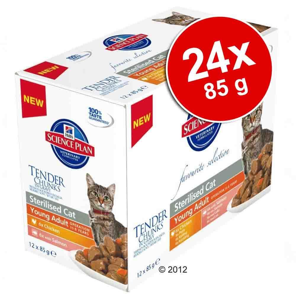 Megapakiet Hill's Feline, 24 x 85 g - Young Adult Sterilised, kurczak i łosoś