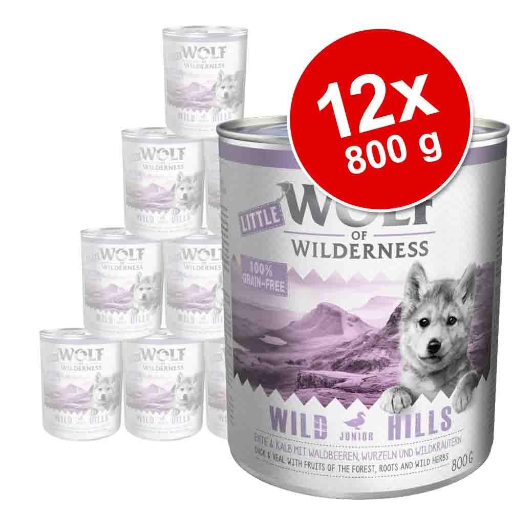 Korzystny pakiet Little Wolf of Wilderness Junior, 12 x 800 g - Blue River Little, kurczak i łosoś