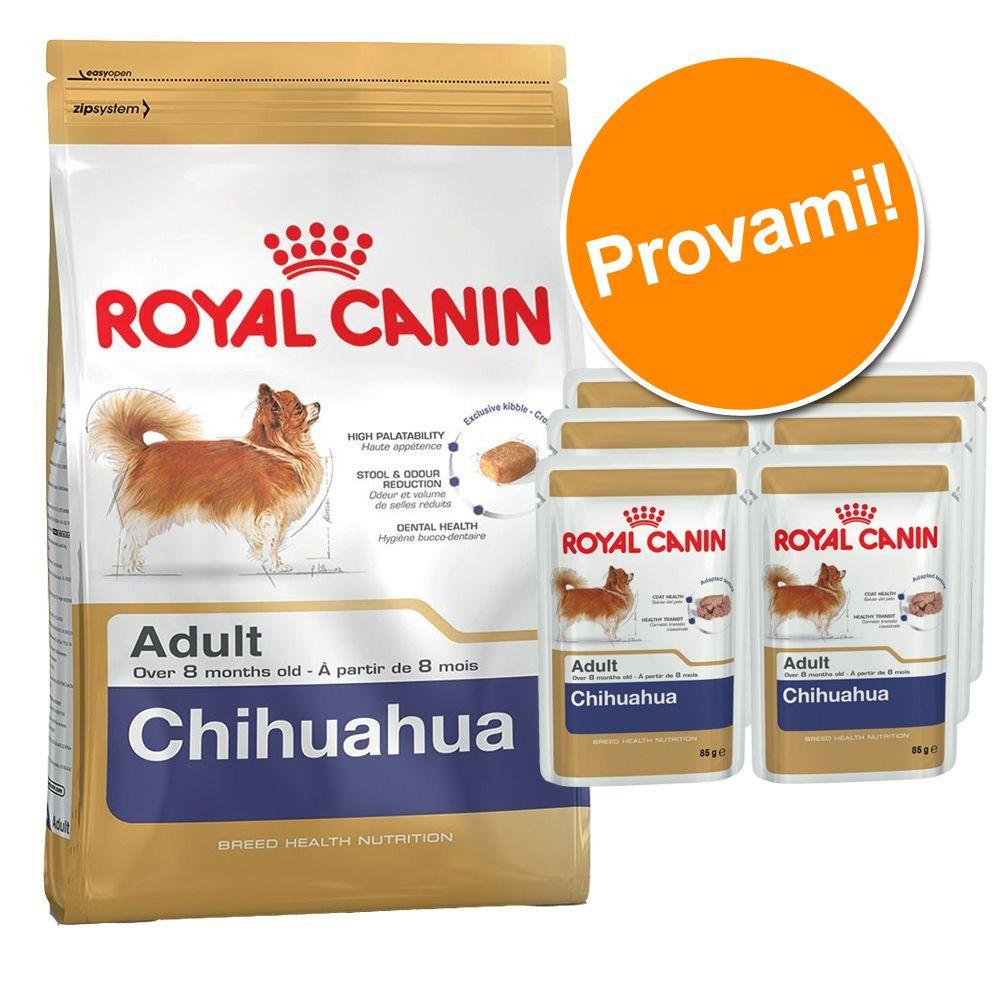 Foto Set prova misto! 3 kg + 6 x 85 g Royal Canin Breed Chihuahua - 3 kg + 6 x 85 g