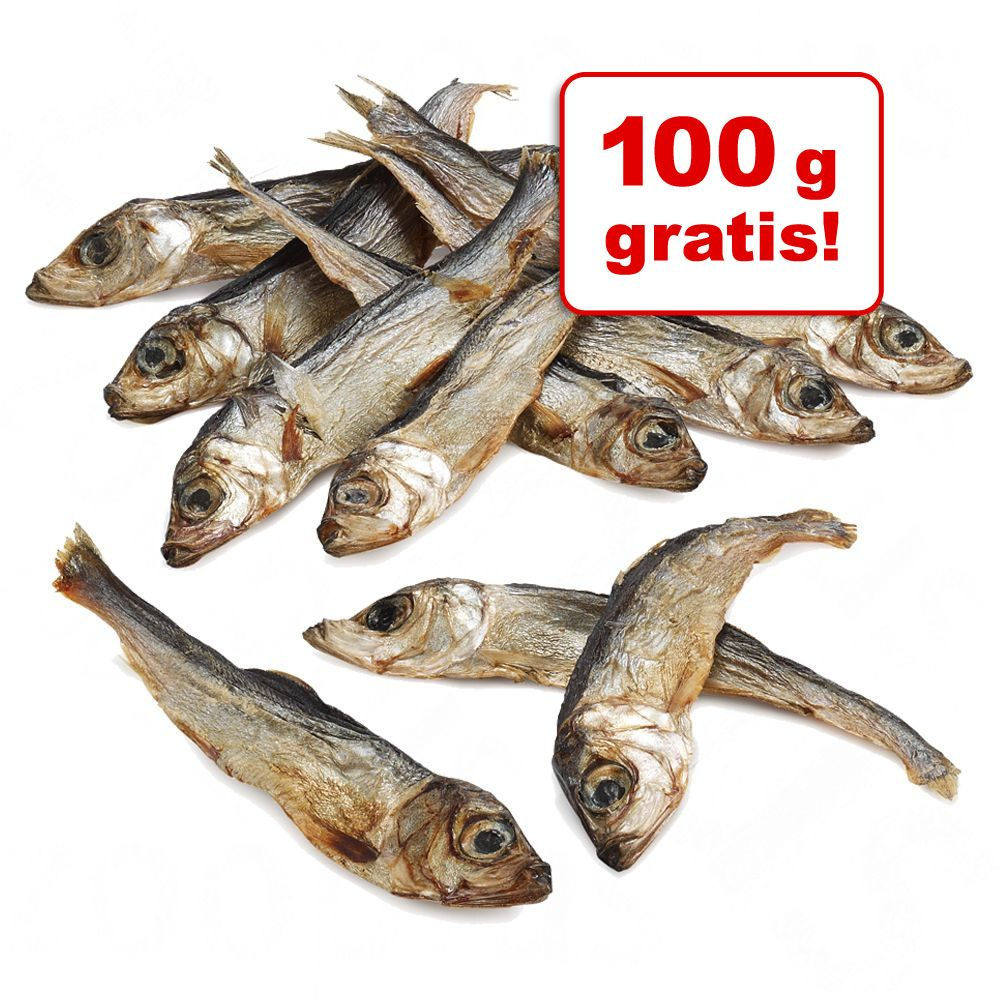 300 + 100 g gratis! Trixie szprotki suszone, 400 g - 400 g