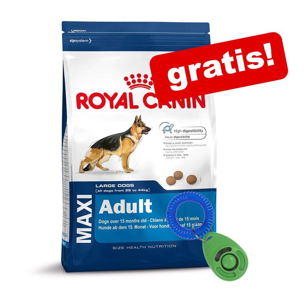 12-15 kg Royal Canin Size + en zooplus klicker på köpet! - Maxi Joint Care (12 kg)