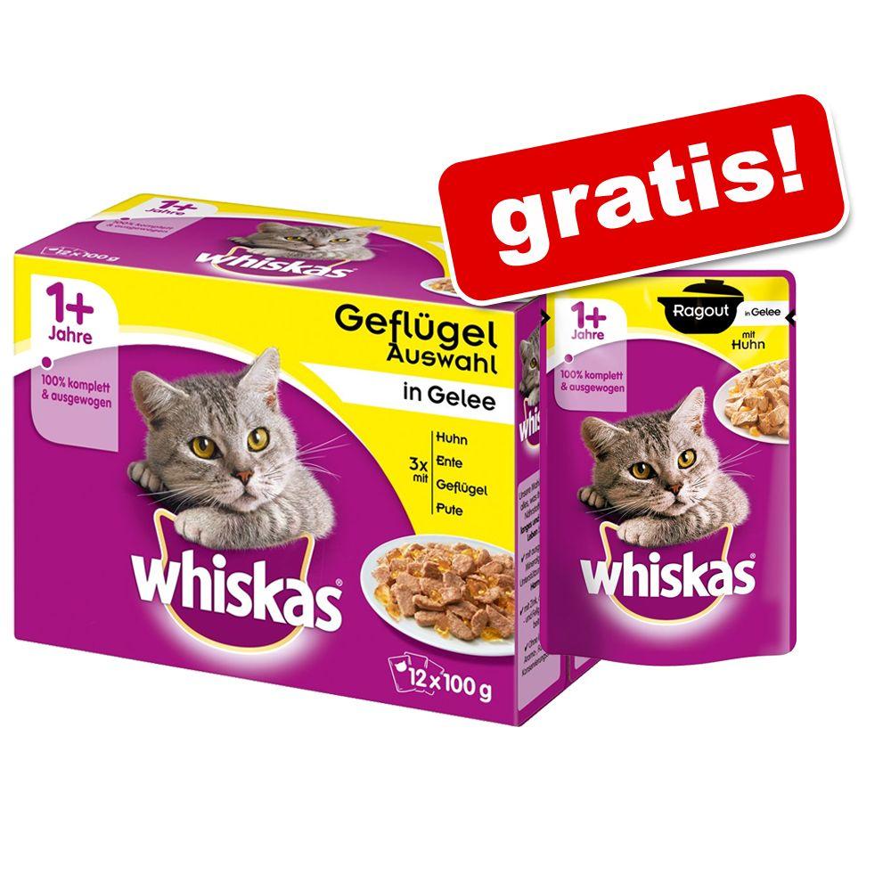 Whiskas 1 + saszetki, 48