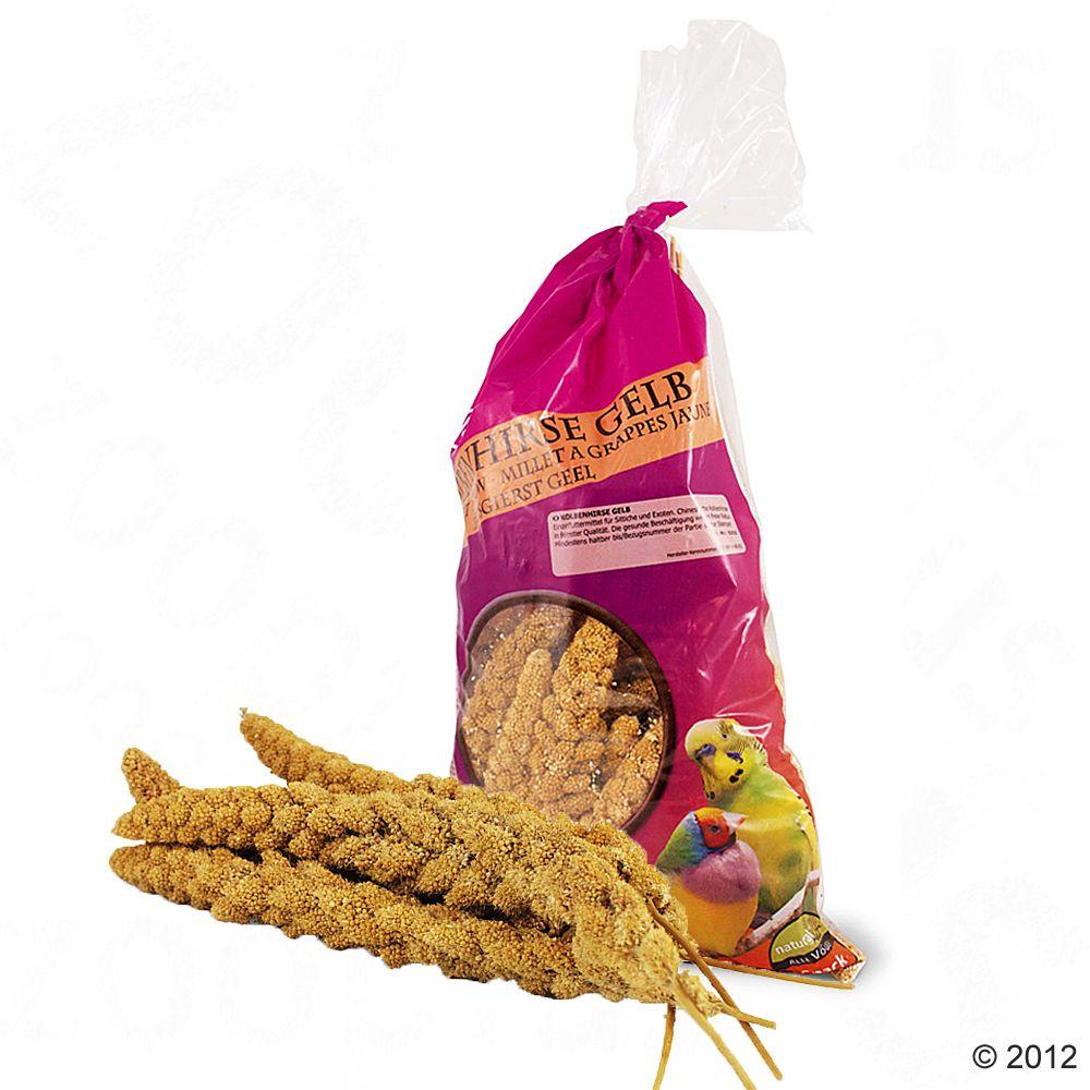 JR Farm Kolba z prosa- żółta - 1 kg