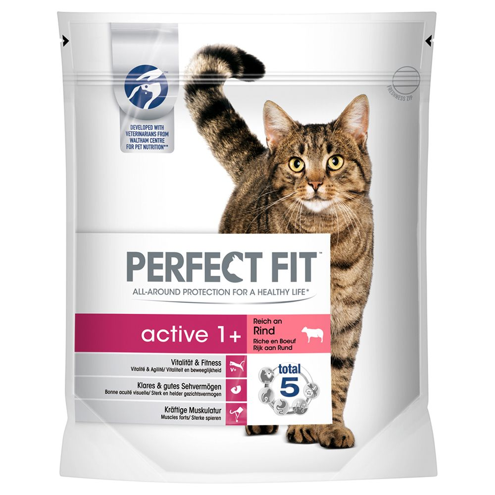 Perfect Fit Active 1+ Rich in Beef - Economy Pack: 3 x 1.4kg