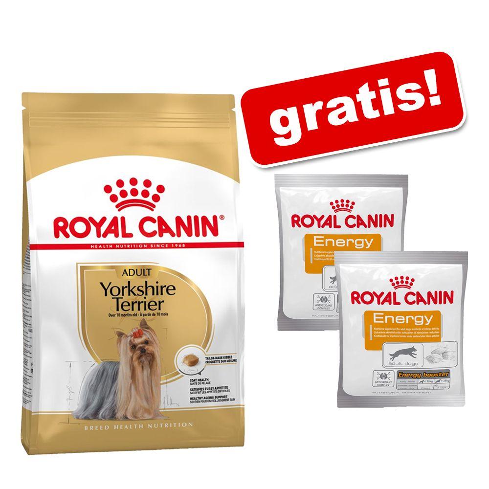 Duże opakowanie Royal Canin Breed + przysmak Royal Canin, 2 x 50 g gratis! - Shih Tzu Adult, 2 x 7,5 kg