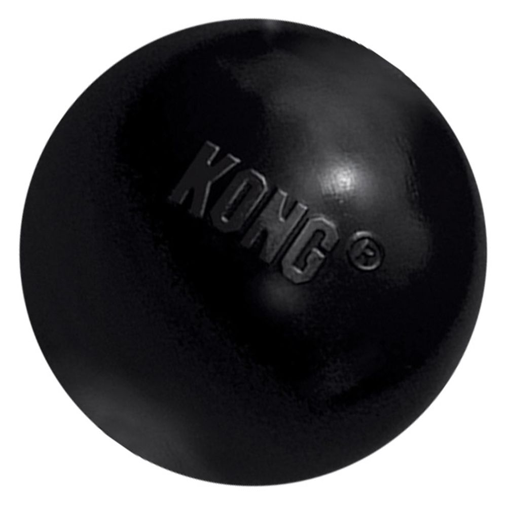 Small KONG Extreme Dog Ball