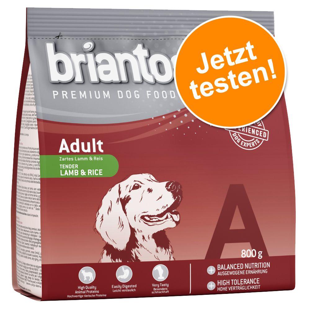 Briantos Adult Lamm & Reis - zum Probierpreis! ...