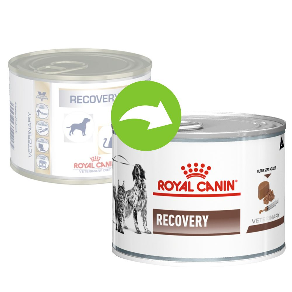 Royal Canin Veterinary Diet Feline Recovery - 12 x 195 g
